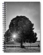 Sunset Tree In Mono Spiral Notebook