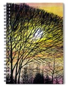 Sunset Tree Silhouette Spiral Notebook
