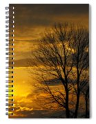 Sunset With Backlit Trees Spiral Notebook