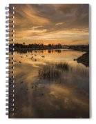 Sunset With Pigeons Spiral Notebook