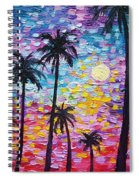 Sunsets In Florida Spiral Notebook