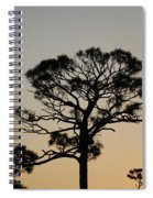 Sunsetting Thru The Trees Spiral Notebook