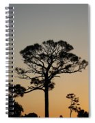 Sunsetting Trees Spiral Notebook