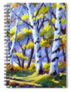 Sunshine And Birches Spiral Notebook
