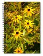 Sunshine Daisies Spiral Notebook