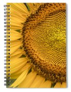 Sunshine Flower Spiral Notebook