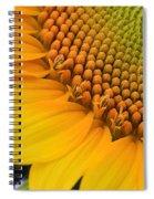 Sunshine In A Flower Spiral Notebook