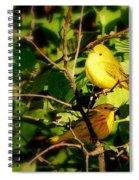 Sunshine Of My Eye Spiral Notebook
