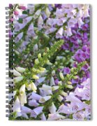 Sunshine On Foxgloves Spiral Notebook