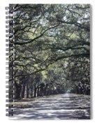 Sunshine On Live Oaks Spiral Notebook