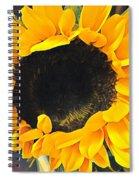 Sunshine On My Mind Spiral Notebook
