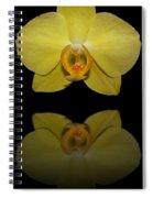 Sunshine Reflection Spiral Notebook