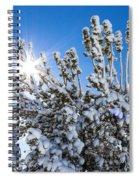 Sunshine Through Snow Covered Tree Spiral Notebook