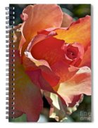 Sunstruck Spiral Notebook