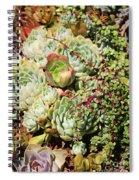 Super Succulents Spiral Notebook
