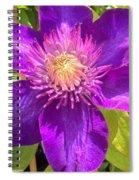 Supreme Violet Spiral Notebook