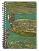 Surfacing Seaturtle Spiral Notebook