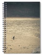 Surfing At Leo Carrillo Beach Spiral Notebook