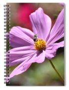 Surprise Inside Spiral Notebook