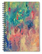 Surprise Party Spiral Notebook