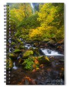 Surrounded By Fall Color Spiral Notebook