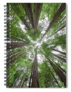 Surrounded By Giants Spiral Notebook