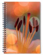 Surrounded By Soothing Sunshine Spiral Notebook