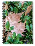 Surrounded Leaf Spiral Notebook