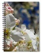 Surrounding Beauty Spiral Notebook