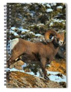 Surverying The Jasper Landscape Spiral Notebook