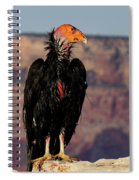 Surveying The Canyon Spiral Notebook