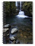 Susan Creek Falls Oregon 1 Spiral Notebook