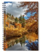 Susan River Reflections Spiral Notebook