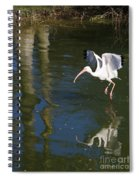 Suspended In Flight Spiral Notebook