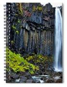 Svartifoss Waterfall - Iceland Spiral Notebook