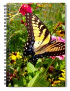 Swallow Tail Butterfly Enjoying The Sunshine Spiral Notebook