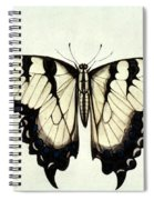 Swallow-tail Butterfly Spiral Notebook