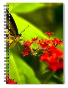 Swallow Tail Spiral Notebook