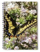 Swallowtail At Sand Wash Spiral Notebook