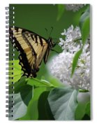 Swallowtail Beauty Spiral Notebook