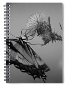 Swallowtail Black And White Spiral Notebook