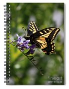 Swallowtail Butterfly 1 Spiral Notebook