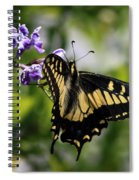 Swallowtail Butterfly 2 Spiral Notebook