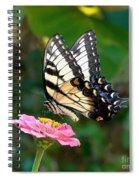 Swallowtail Butterfly 3 Spiral Notebook