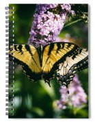 Swallowtail Butterfly At The Maryland Zoo Spiral Notebook