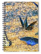 Swallowtail Butterfly Convention Spiral Notebook