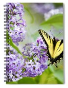Swallowtail Butterfly On Lilacs Spiral Notebook