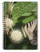 Swallowtail With Flowers Spiral Notebook