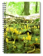 Swamp Becon Fungi Spiral Notebook