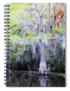 Swamp Colors Spiral Notebook